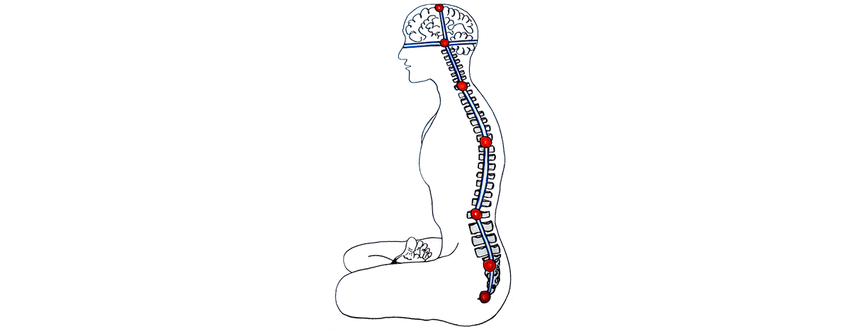 El arte y la ciencia de Kriya Yoga